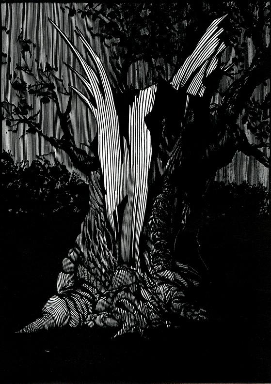 A Blasted Tree