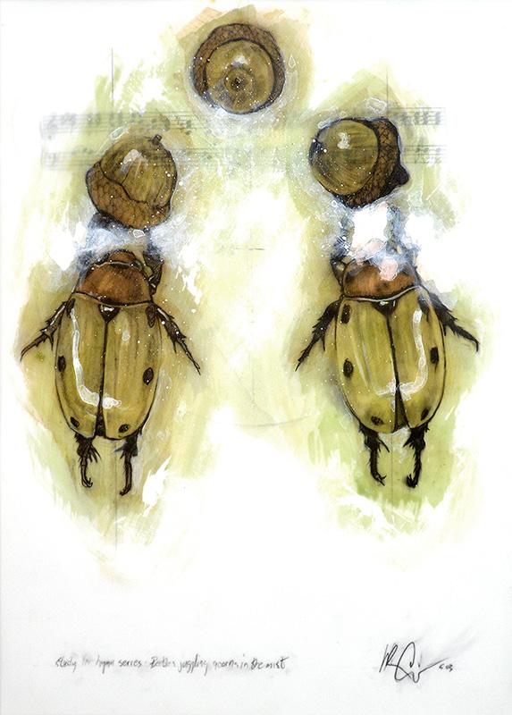 Beetles Juggling Acorns in the Mist