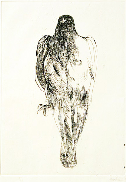 Eagle Communication