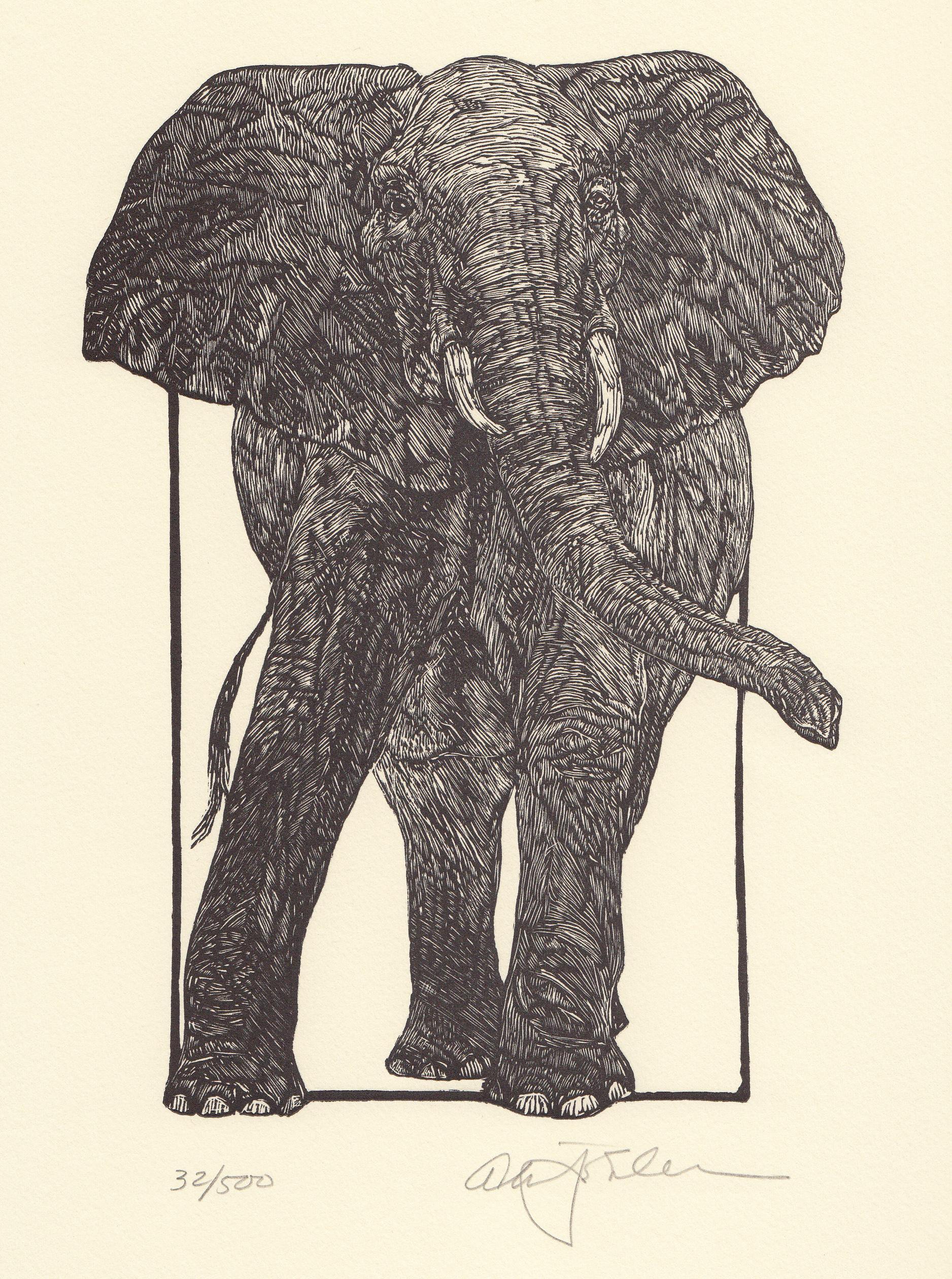 Elephant ∙ Engravings ∙ R Michelson Galleries