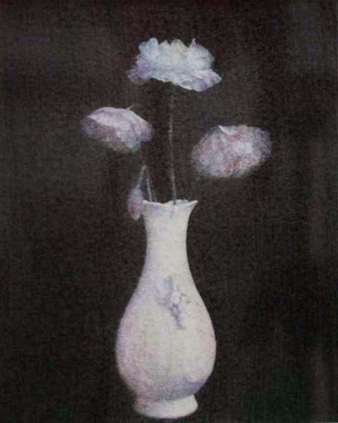 Poppies (Dark)