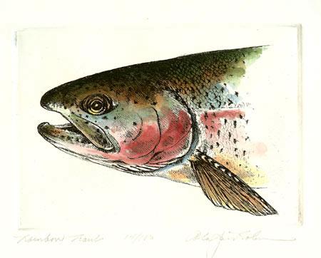 Rainbow Trout Head