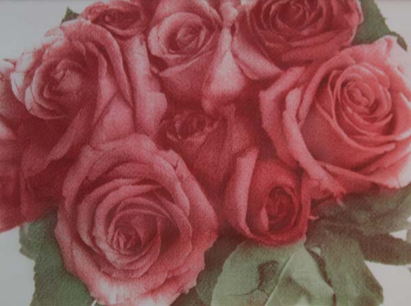 Roses in Bunch