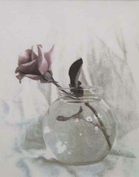 Single Rose in Clear Vase