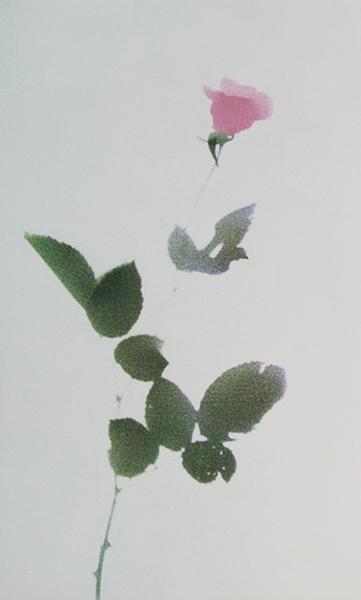 Single Rose (Right)