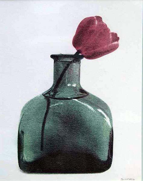 Tulip in Square Bottle