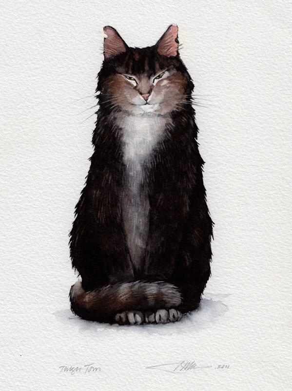 Cat Talk Title Page