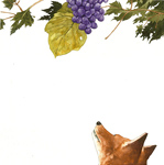 Fox Spies Grapes