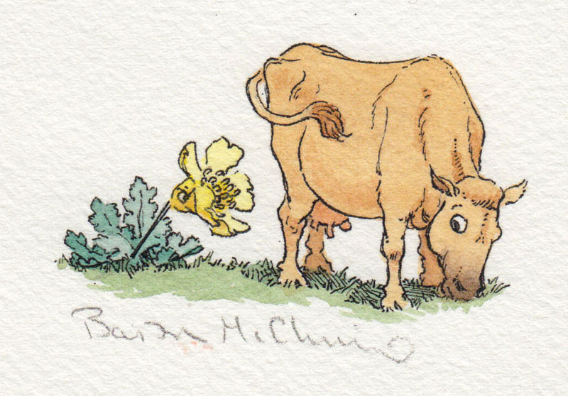 If The Buttercups Ate The Cows