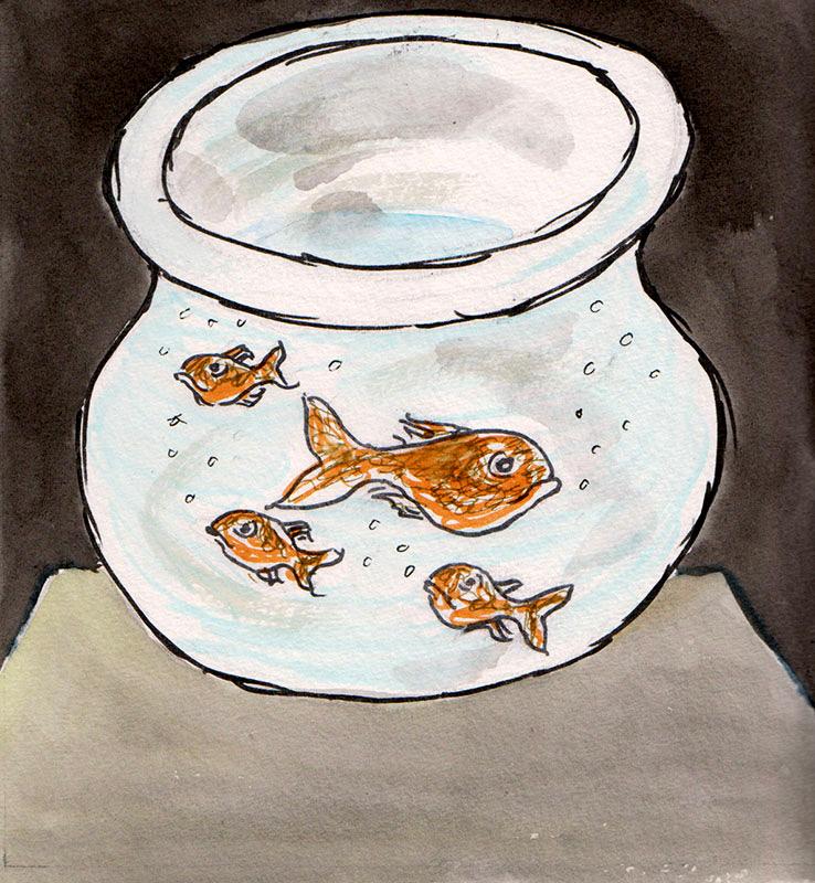 The Goldfish Said