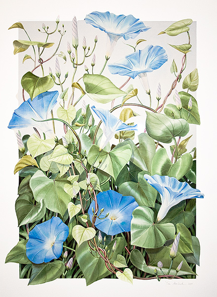 Seven Morning Glories ∙ Florals ∙ R Michelson Galleries