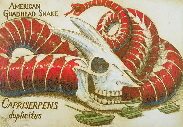 American Goadhead Snake