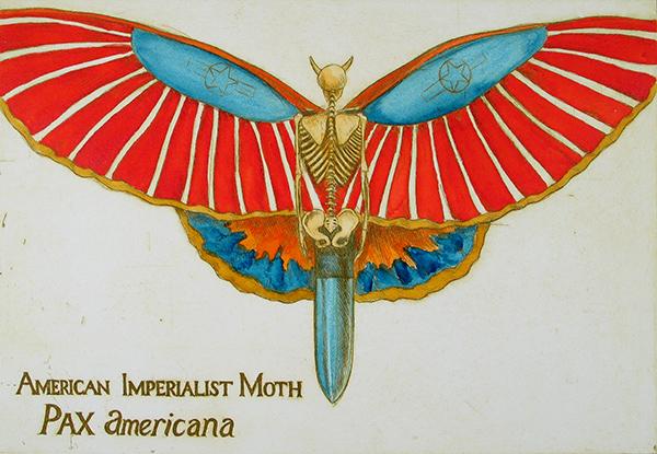 American Imperialist Moth