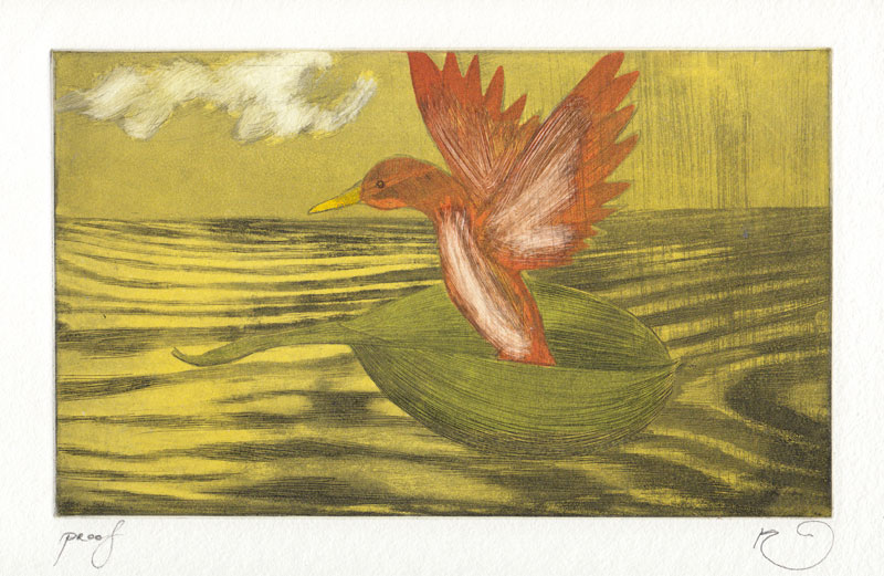 Ducks Flew Down