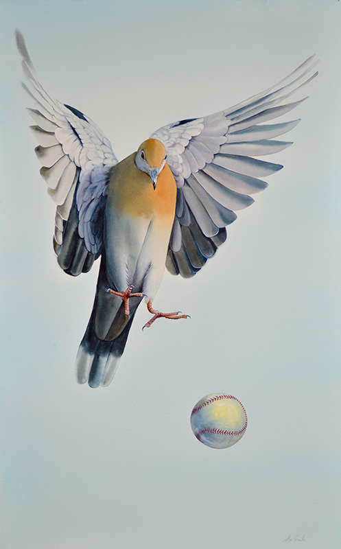 Pigeon with Baseball40x25 in