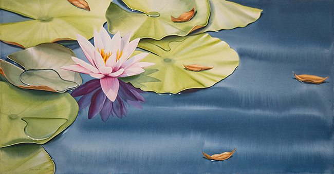 Water Lily with Leaves