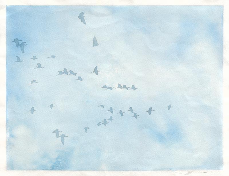 Birds (half title page)