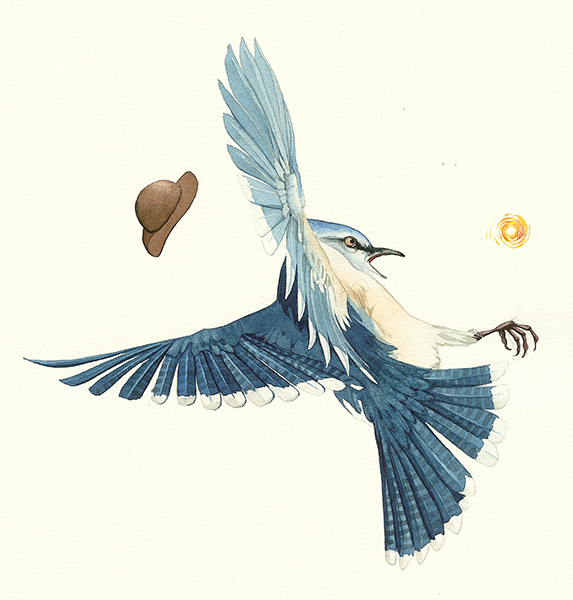 Bruh Blue Jay Drops the Fire