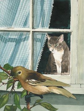 I Watch Birds
