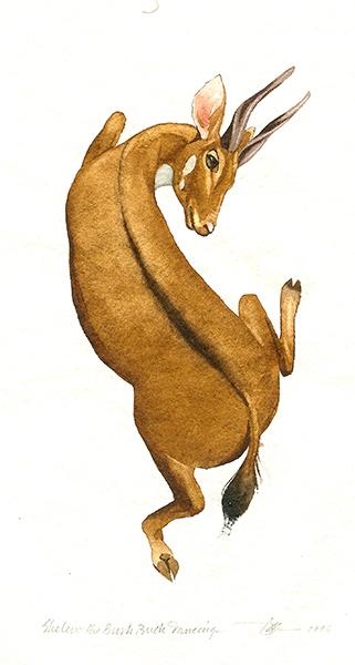 Shelen the Bruh Buck Dancing