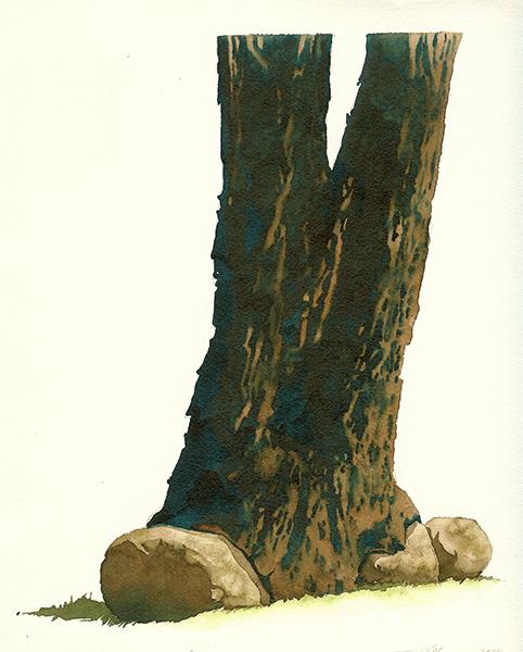 The Locust Tree