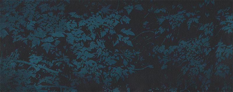 The Night Woods