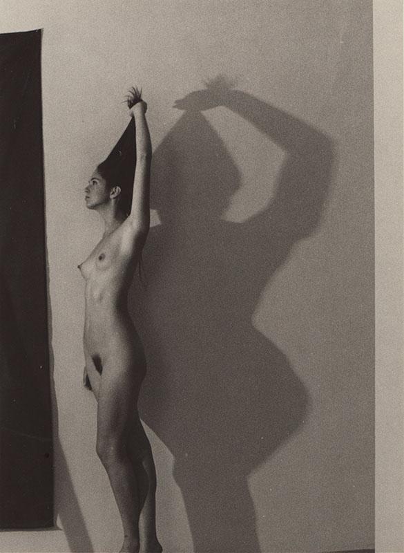 Shadow | 224-66