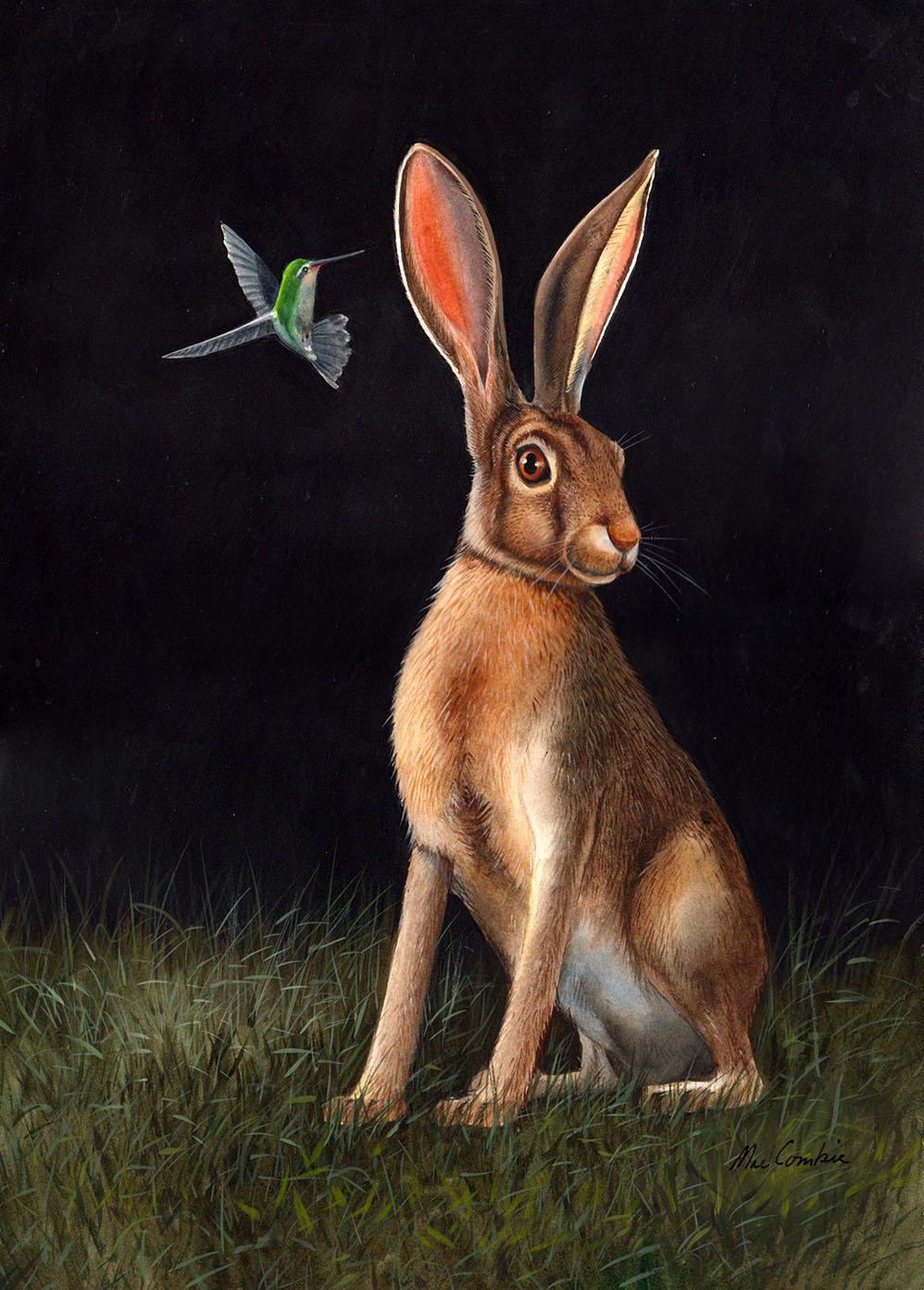 Rabbit and Hummingbird
