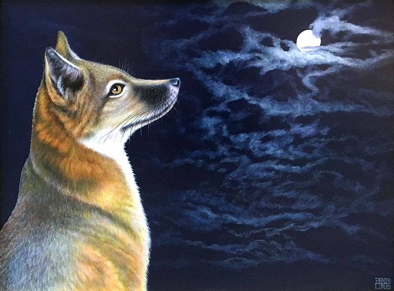 Coyote by the Full Moon
