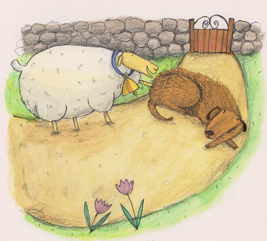 Sheep Meets Dog