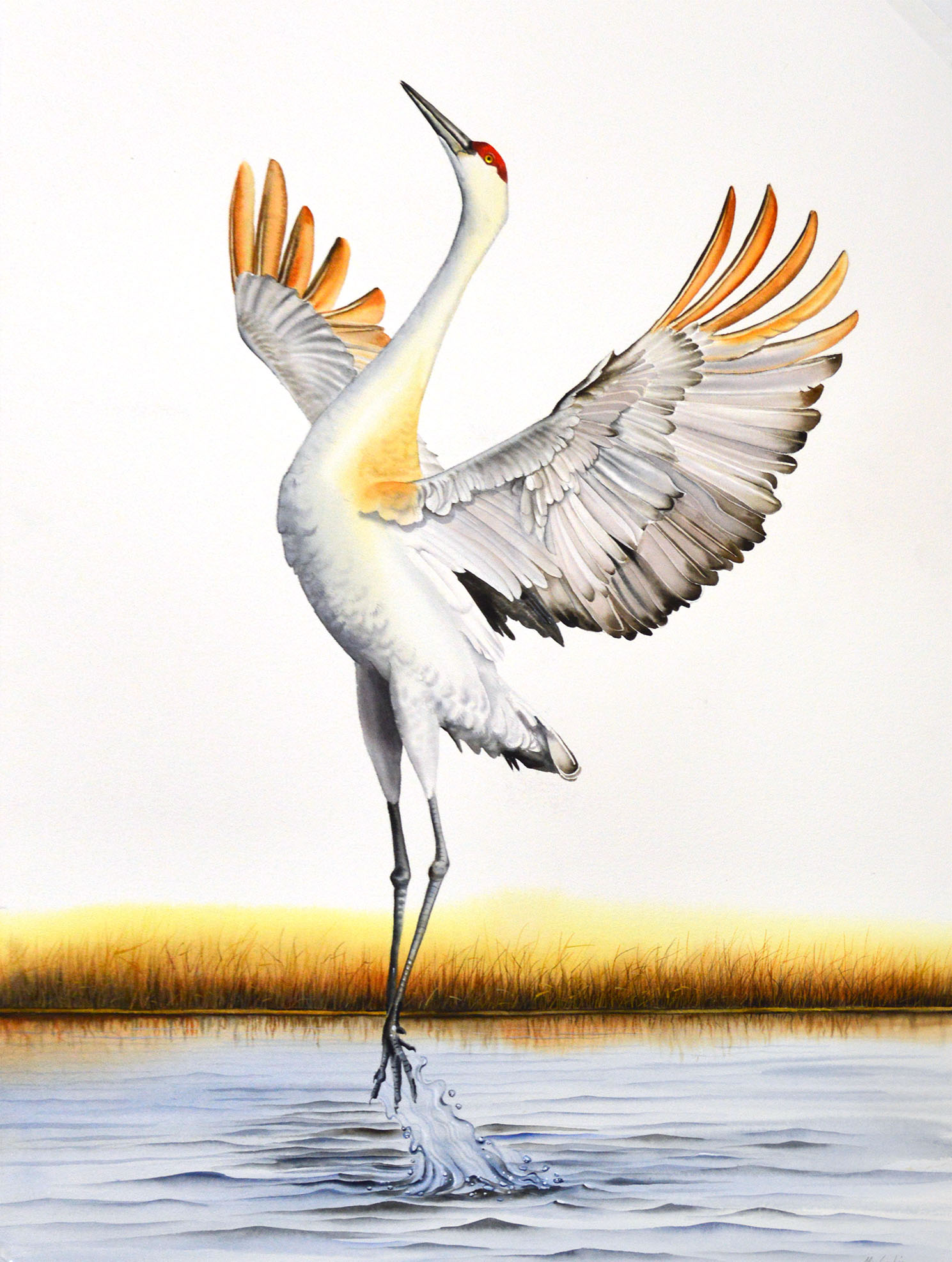 Crane Triptych Right