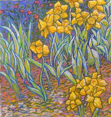 Daffodils Star