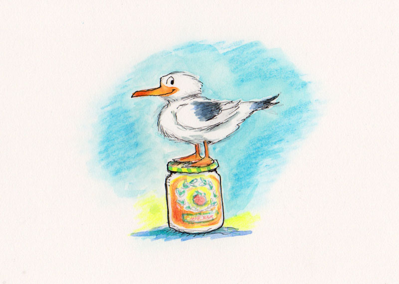 Seagull Perched on Marmalade