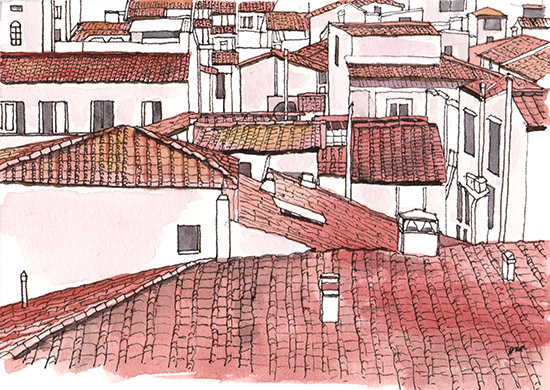 Terra Cotta Rooftops