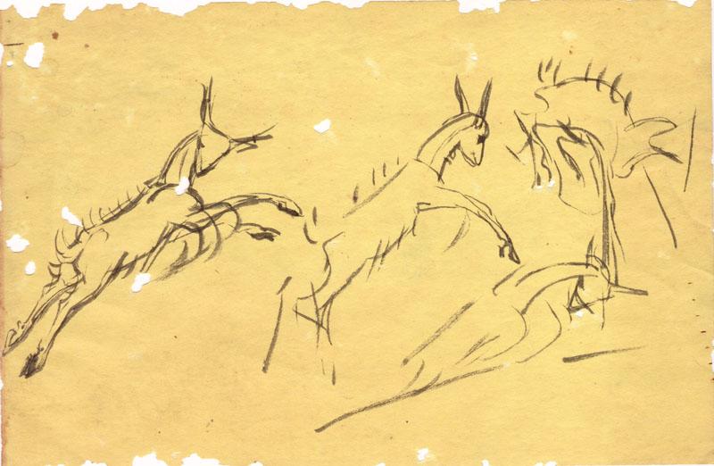 Kacheeka Leaping Sketch