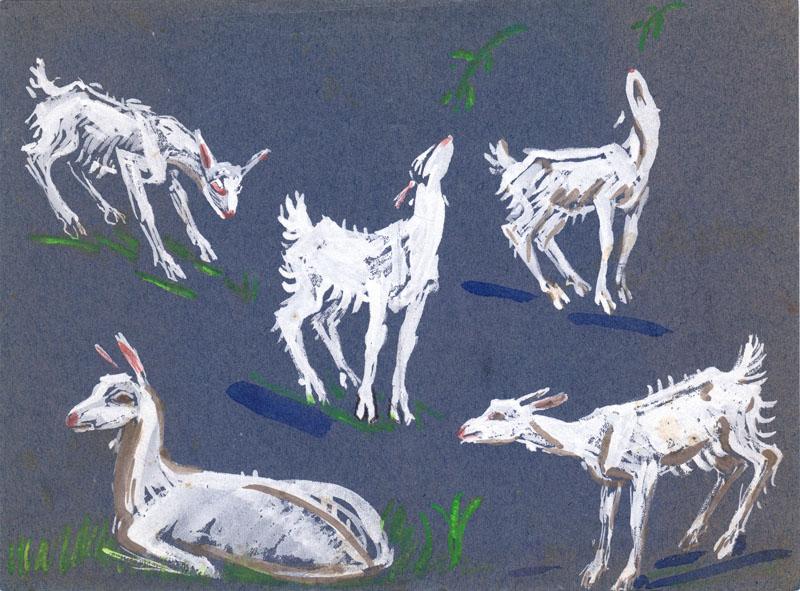 Kacheeka Paint Studies