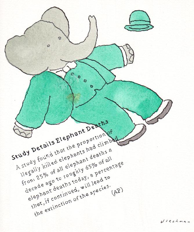 Elephant Deaths I