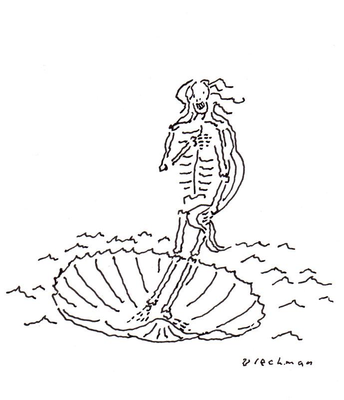 Skeletal Venus