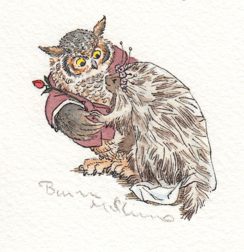 And the Owl the Porcupine (Unpublished)