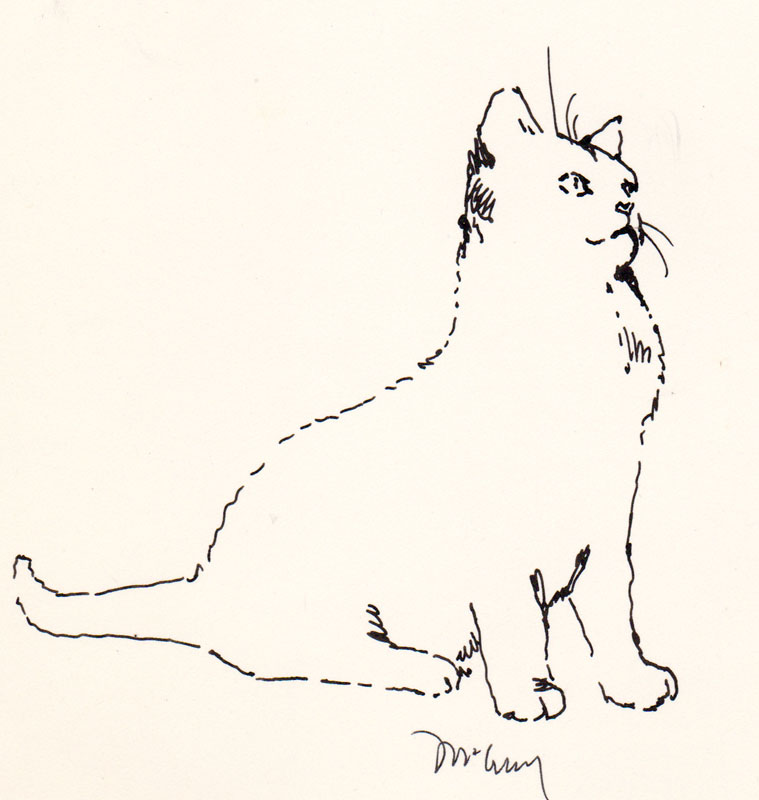Jeoffry Cat II