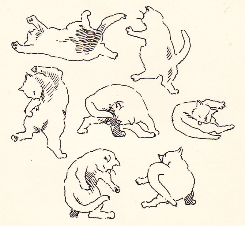 Jeoffry Cats III