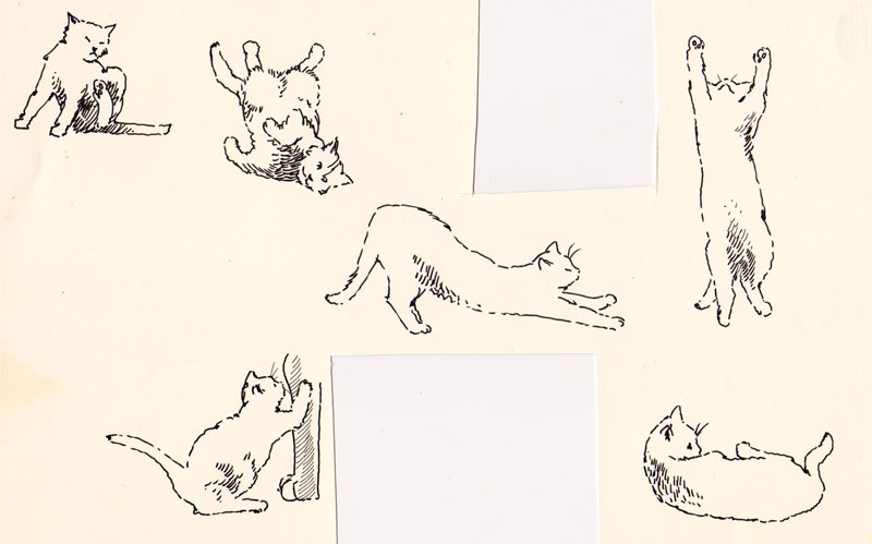 Jeoffry Cats IV