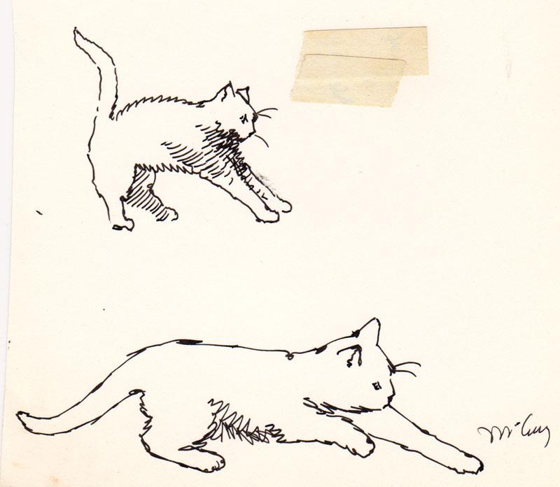Jeoffry Cats VI