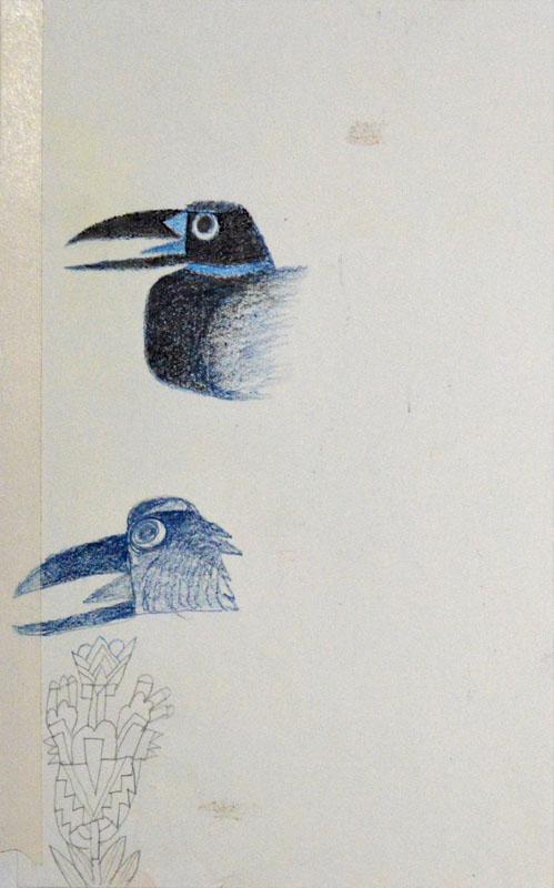 2 Blue Raven Study