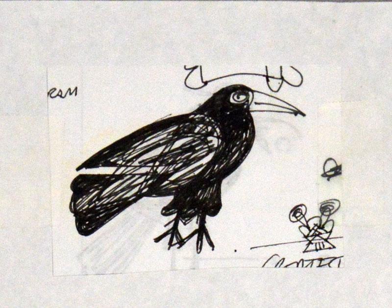 Small Black Raven Study