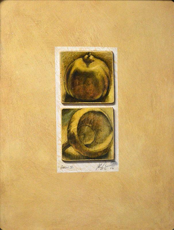 Quercus IV